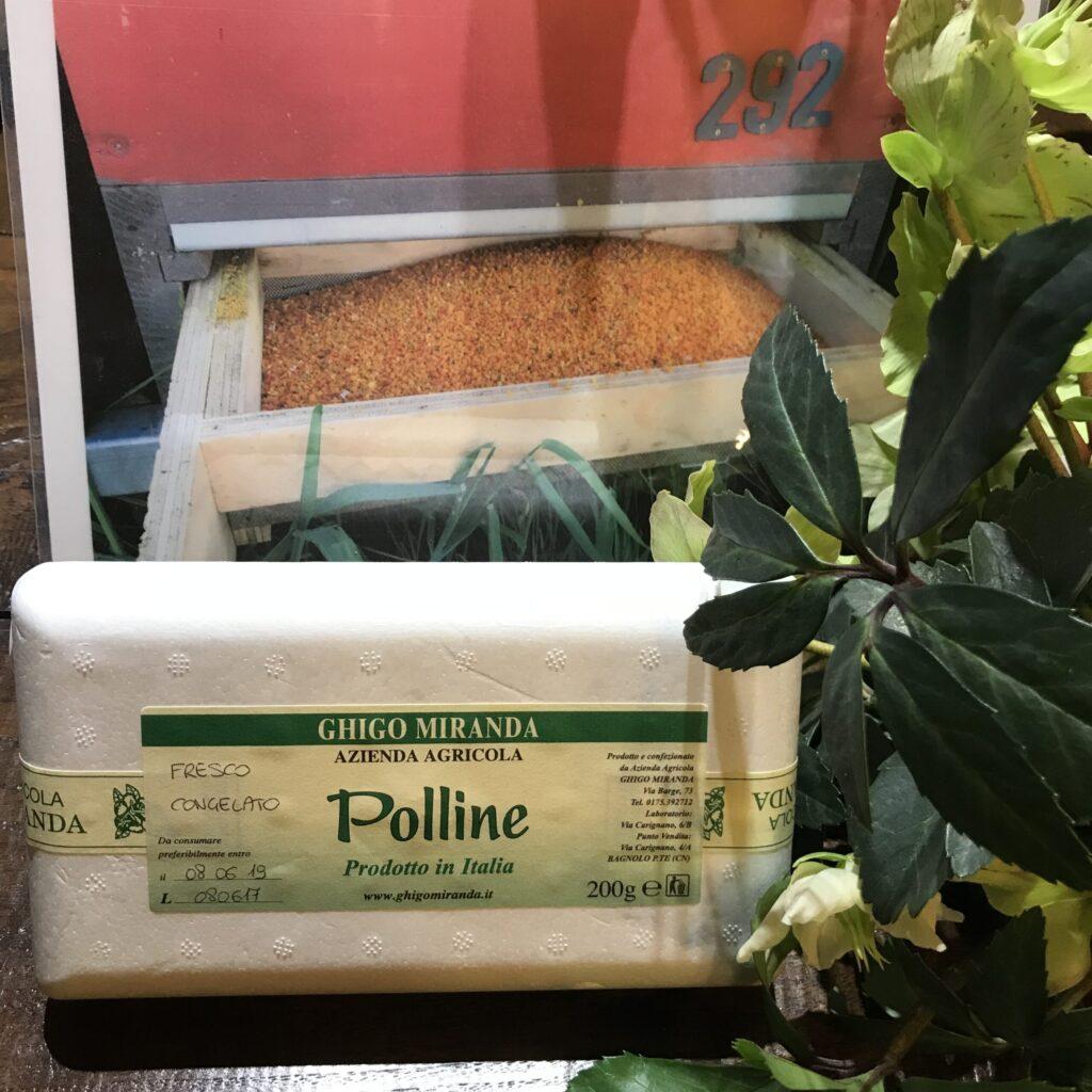 polline in grani congelato