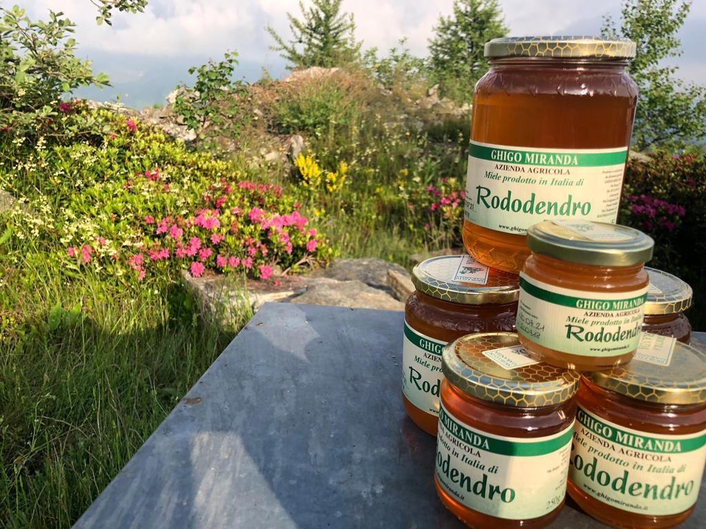 il miele di rododendro gruppo (1)