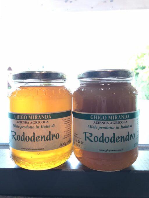 il miele di rododendro gruppo (3)