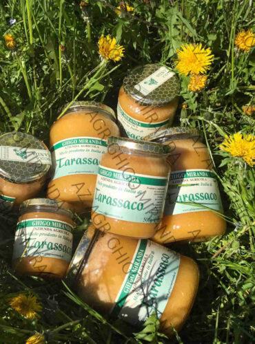 il miele di tarassaco e i fiori di tarassaco